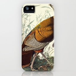 Great American Cock (Wild Turkey) iPhone Case
