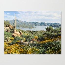 Arizona Blooms Canvas Print