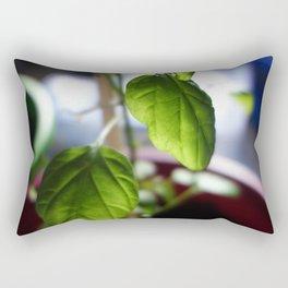 Sunlit Serrano Rectangular Pillow