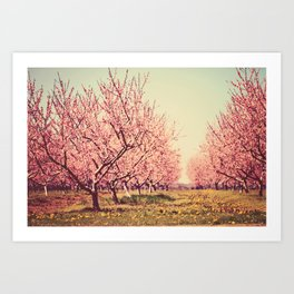 Springtime Dream Art Print