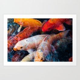 Koi-Fish Art Print