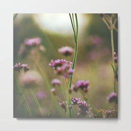 Wild Meadow Metal Print