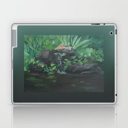 Fountain at the Zoo AC151223b-13 Laptop & iPad Skin