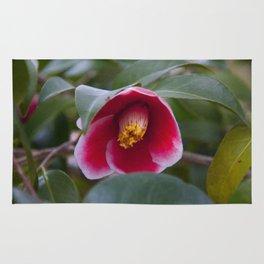 Floral Print 080 Rug