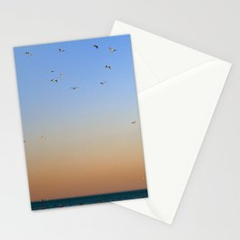 Seagulls Over Lake Michigan Stationery Cards
