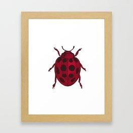 Red Lady Bug - white background Framed Art Print