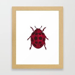 Red Lady Bug - white background Framed Art Print