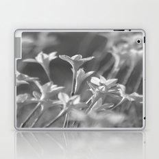 Rain Lilies Laptop & iPad Skin