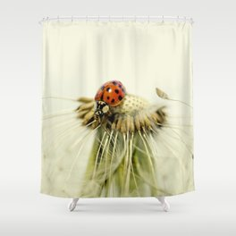 Dandelion Ladybugs Shower Curtain