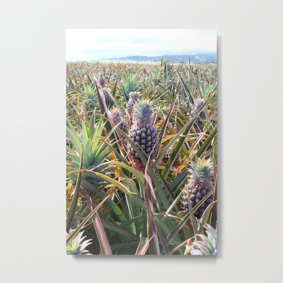 Pineapple Field Metal Print