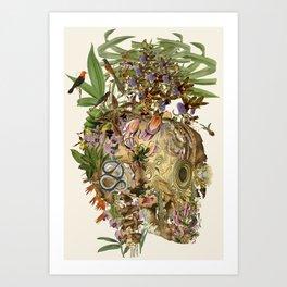 """vanitas"" anatomical collage art by bedelgeuse Art Print"