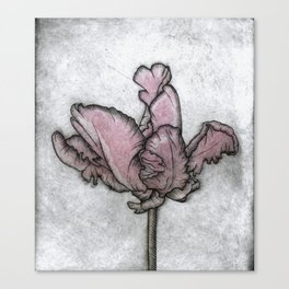 Chromatic Orchid Canvas Print