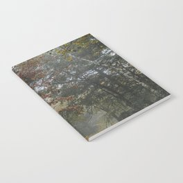 Minnewaska State Park Notebook
