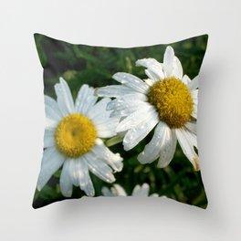 Rain Kissed Daisy Duo Throw Pillow
