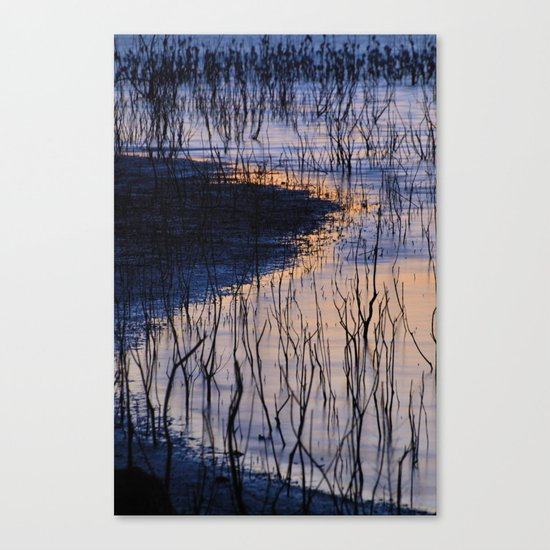 curved line Canvas Print