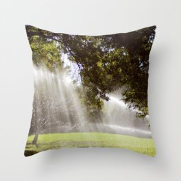 Sprinklers in Central Park Throw Pillow