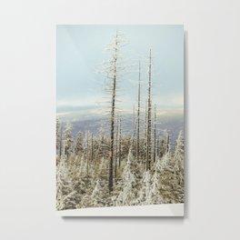 Atop Grab Hammer Trail vert, Snowshoe, WV, 2014 Metal Print