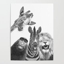Black and White Jungle Animal Friends Poster