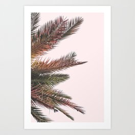 Palm Life Art Print