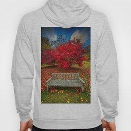 Autumn Splendour Hoody