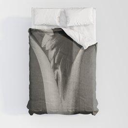 Aconitum (Aconite or Monks Hood) enlarged 6 times from Urformen der Kunst (1928) by Karl Blossfeldt Comforters
