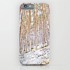 Pines in the snow Slim Case iPhone 6s