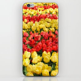 Red and Gold iPhone Skin