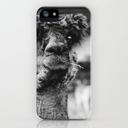 Dog by Karly Jones iPhone Case