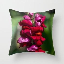Vibrant Snapdragon Throw Pillow