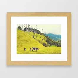 Beautiful Bucolic Countryside in Colombia Fine Art Print Framed Art Print