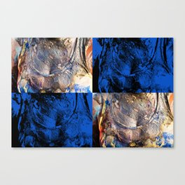 carnival chest Canvas Print