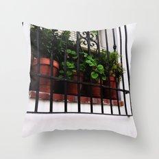 Whitewashed Walls Throw Pillow