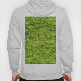 Field of fresh green grass Hoody