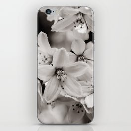 Little Whites ~ No.2 iPhone Skin