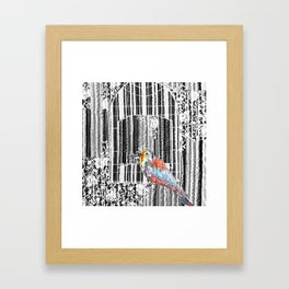 Spring bird Framed Art Print