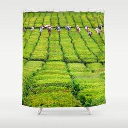 Porto Formoso tea gardens Shower Curtain