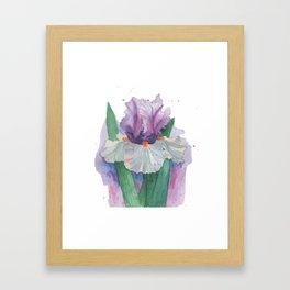 Purple Iris Watercolor Framed Art Print