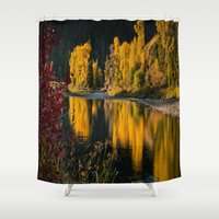 beaver Shower Curtains featuring Sunrise Aspens Beaver Creek by John Minar Fine Art Photography