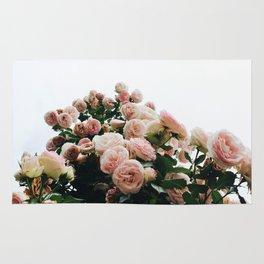 Climbing Roses at International Rose Test Garden Rug