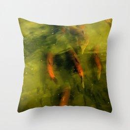 Sockeye Salmon at Potter Marsh Throw Pillow