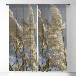 Pampas Grass Blackout Curtain