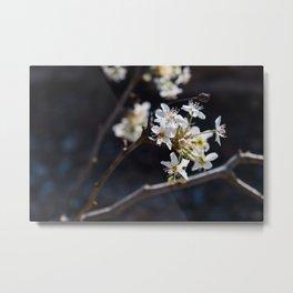 Wabi Sabi - color and light Metal Print