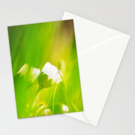 Daisy abstract wall Design Stationery Cards