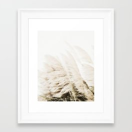 Pampas Grass Framed Art Print