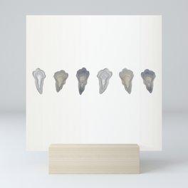 Oysters a Study Mini Art Print