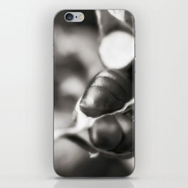 Flag Iris Seed Pod 1 iPhone Skin