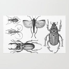 Vintage Beetle black and white drawing Rug