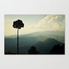 High as a tree Canvas Print