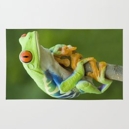 Red-eyed Tree Frog 4 Rug