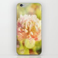 clover iPhone & iPod Skins featuring Clover by Magic Emilia